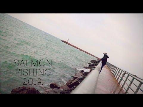 Lake Michigan Salmon Fishing CATCH & COOK!