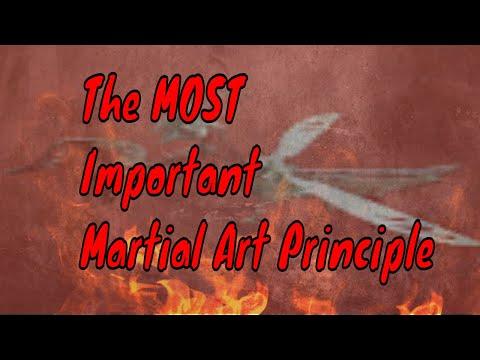 The Most Important Martial Art Principle