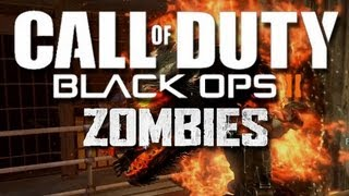 Black Ops 2 Zombie Trolling - Mob of the Dead Zombies!