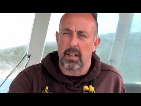 Sustainable Cornish Fishing - Wild Harbour Fish Co