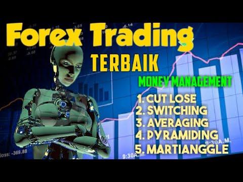Belajar trading forex bagi pemula