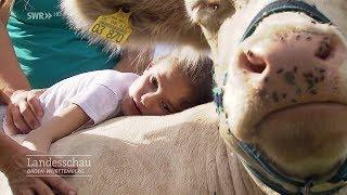 Therapie mit Schaf, Kuh und Hund | Landesschau Baden-Württemberg