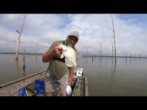 Crappie Fishing Mississippi   Sardis MS Sept 27, 2020   HD 720p