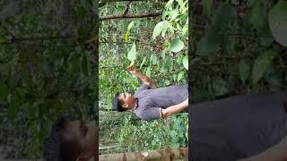 Mengenal obat herbal khas Kalimantan.