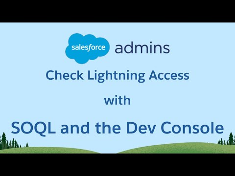 Check Lightning Access with SOQL and the Dev Console ⚡️🧐