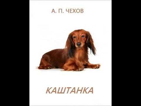 Изображение предпросмотра прочтения – ЯнаАниканова представляет буктрейлер кпроизведению «Каштанка» А.П.Чехова