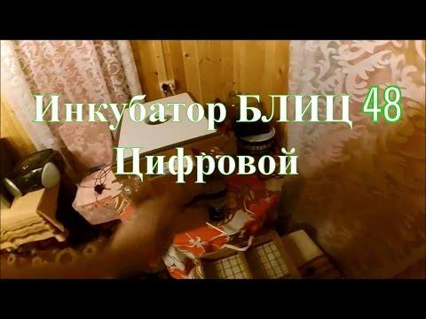 Новости Казахстана: последние новости на