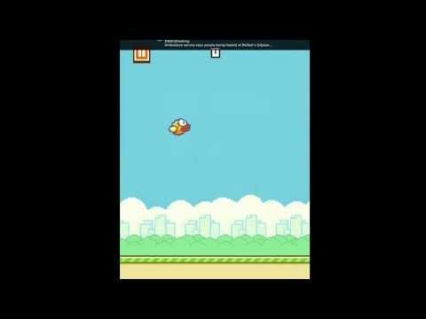 Crappy flappy bird.