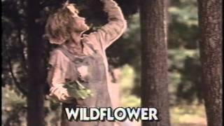 Wildflower 1991 Movie Trailer
