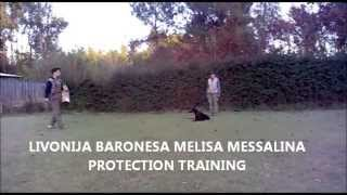 Livonija Baronesa Melisa Messalina. Protection Training..wmv