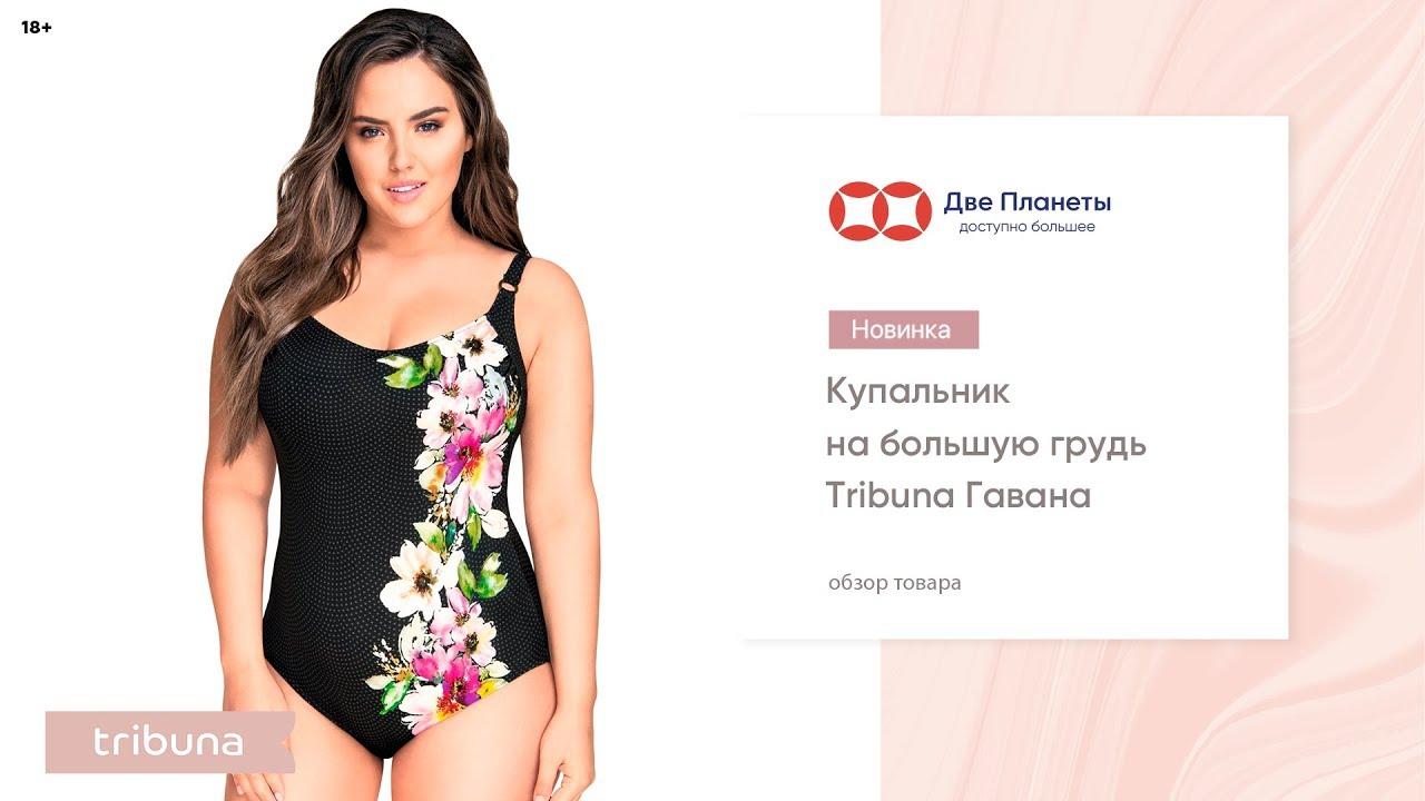 0fce5d2ef5467 Слитный черный купальник Трибуна, большие размеры – купить в Москве, СПб