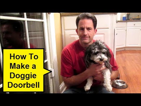 How To Make A Doggie Doorbell Howtolou Youtube