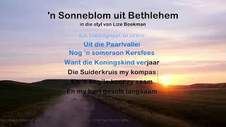 'n Sonneblom uit Bethlehem - ProTrax Karaoke Demo