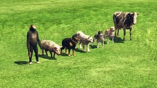 GTA 5 - Which Animal Is The Fastest