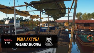 Рыбалка на реке Ахтуба рыбалка на Сома — Русская Рыбалка 4