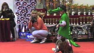 Выставка собак на форуме ''Миллион друзей''