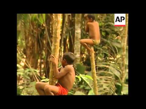 Nomadic Amazon tribe returns to the jungle in Colombia