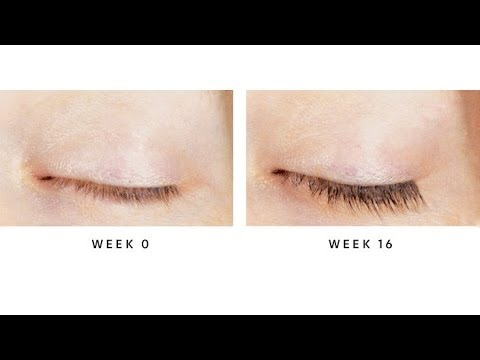 44b806a9d9b Treat your thinning lashes to LashFood - YouTube