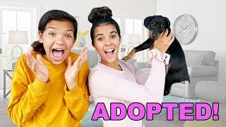 We ADOPTED a PUPPY!!! Big Family Surprise