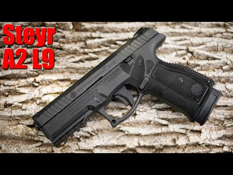 Steyr A2 L9 MF: The Best Gun You Haven't Heard Of First Shots