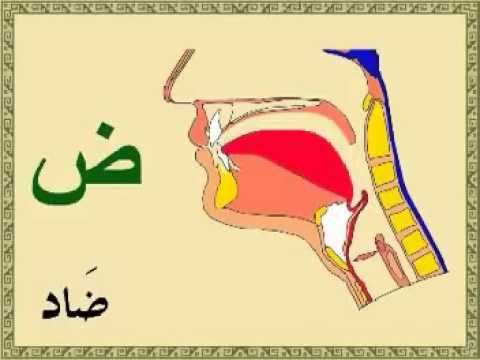 Learn the pronunciation of Arabic letters the easy way - YouTube