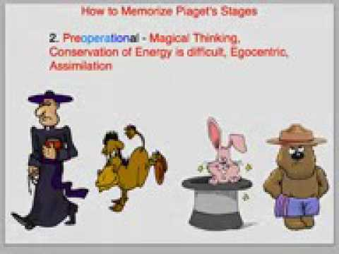 How to Memorize Piaget's Stages of Cognitive Development   YouTube