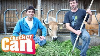 Der Bauernhof-Check | Reportage für Kinder | Checker Can