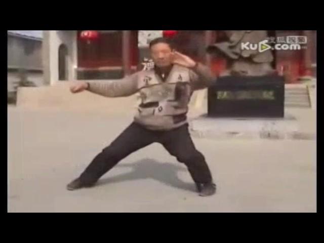 Chen Qinghuan  - Tai Chi style Chen Xiaojia Yilu (Chenjiagou) [陈氏太极拳小架 Taijiquan style Chen Xiaojia]