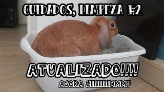 Diarios de Coelhos - Cuidados, Limpeza das Caixinhas - Atualizado!