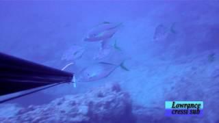 Pesca submarina en Gran Canaria (Jaime Heras)