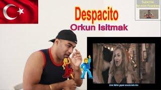Despacito Parodi  - Orkun Işıtmak |Reaction |Aalu Fries