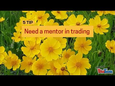 Tips to become forex trader