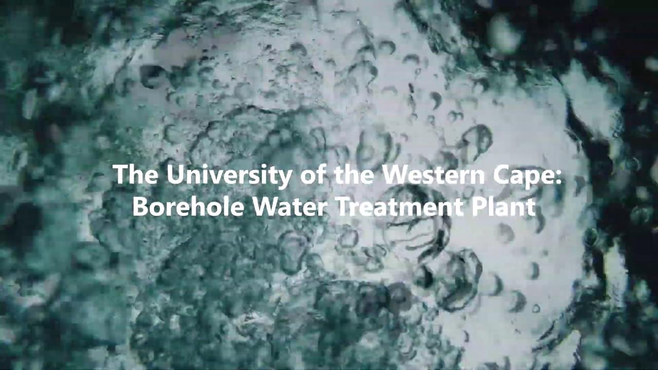 University of Western Cape