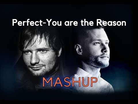 Ed Sheeran-Perfect/Calum Scott-You Are The Reason-MASHUP