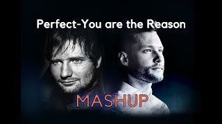 Download Lagu Ed Sheeran-Perfect/Calum Scott-You are the Reason-MASHUP Mp3