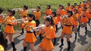 第35回大江山酒呑童子祭りパレード HD版<FULL> 京都橘高校吹奏楽部 Kyoto Tachibana SHS Band