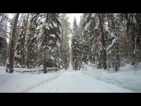 Солнечное-Зеленогорск