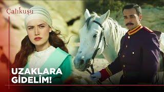 Feridenin Beyaz Atlı Prensi  Çalıkuşu 10. Bölüm