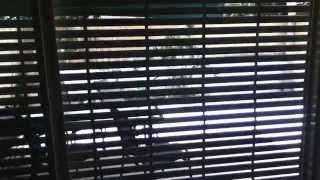Двухкомнатная квартира S 1 - Твой Тель-Авив - Как снять квартиру в Тель-Авиве(