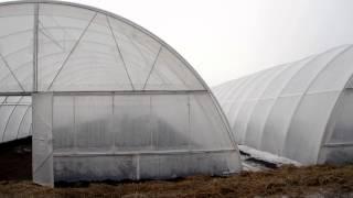 видео: Строим современную теплицу