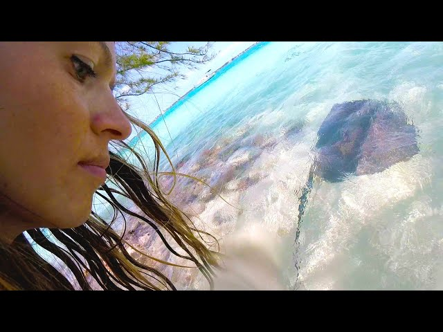 Swimming with Stingrays and best conch salad in the Bahamas // SailOceans
