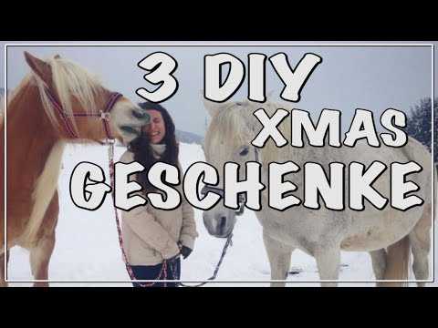 3 Diy Geschenke Fur Reiter Pferd Youtube