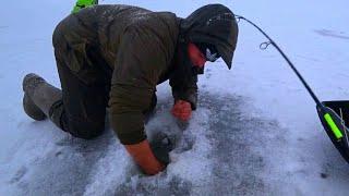 РУКИ В КРОВЬ ВОТ ЭТО РЫБАЛКА НЕ ЛЕЗУТ В ЛУНКИ рыбалка зимой 2020