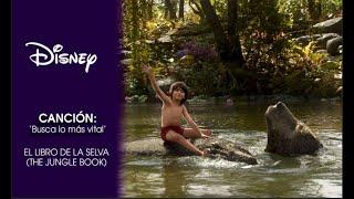 El Libro de la Selva (The Jungle Book): Canción 'Busca lo más vital' | Disney Oficial