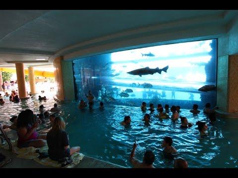 SHARK POOL WATER SLIDE - Las Vegas!