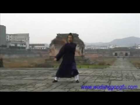 Wudang Taiji 108 - Part 3 - Master Yuan Xiu Gang (武当太极108式 - 第3段 - 袁修刚)