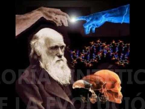 teoria sintetica