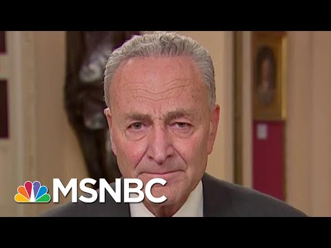 Chuck Schumer: Republicans Were Fixated On Schiff During Powerful Close | The 11th Hour | MSNBC