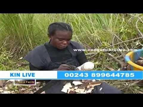 RDC: UN VILLAGE DE 37 HABITANTS TOUS ENGAGES DANS L'AGRICULTURE