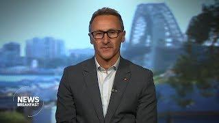 Greens push to legalise marijuana as 'war on drugs fails'